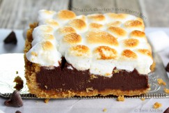 Decadent Dark Chocolate Nutella S'mores Bars