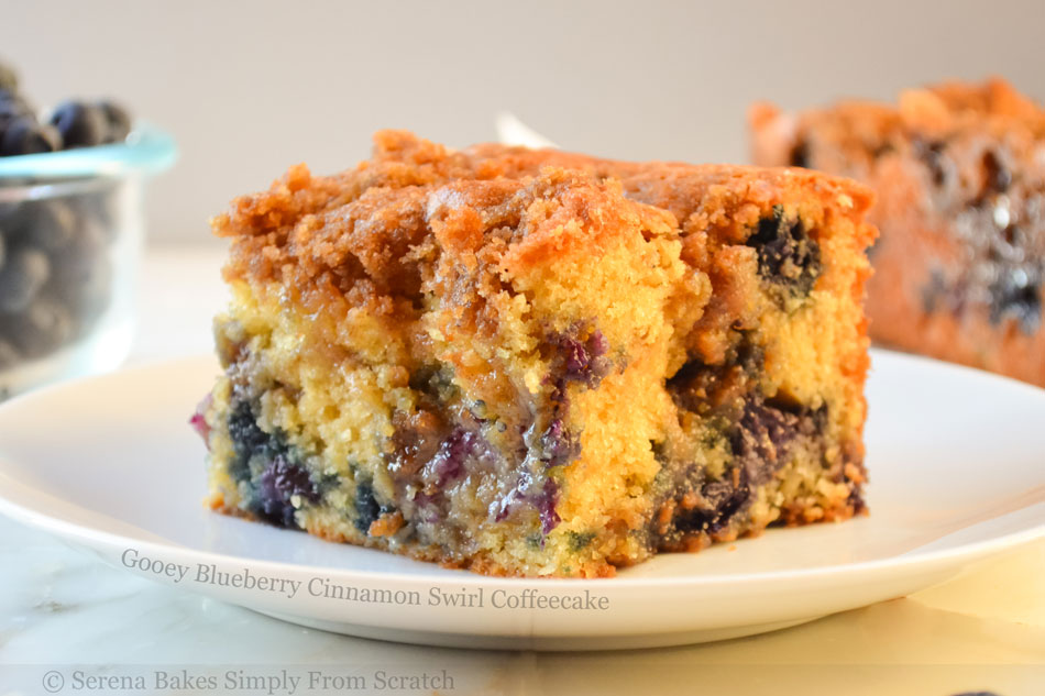 Gooey Blueberry Cinnamon Swirl Coffeecake