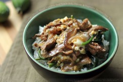 Gyudon – Thinly Sliced Japanese Beef Tenderloin, Onions  and Vegetable Donburi Over Rice
