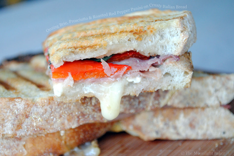 Oozing Brie, Prosciutto and Roasted Red Pepper Panini on Crusty Italian Bread