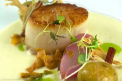 Sea Scallop with Truffled Cauliflower Puree, Bacon, Crispy Mushroom and Creamer Potatoes