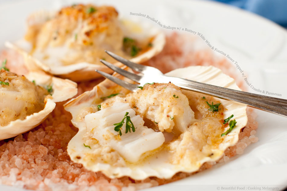 Succulent Broiled Sea Scallops with a Buttery White Wine and Fontina Sauce Topped with Bread Crumbs and Parmesan